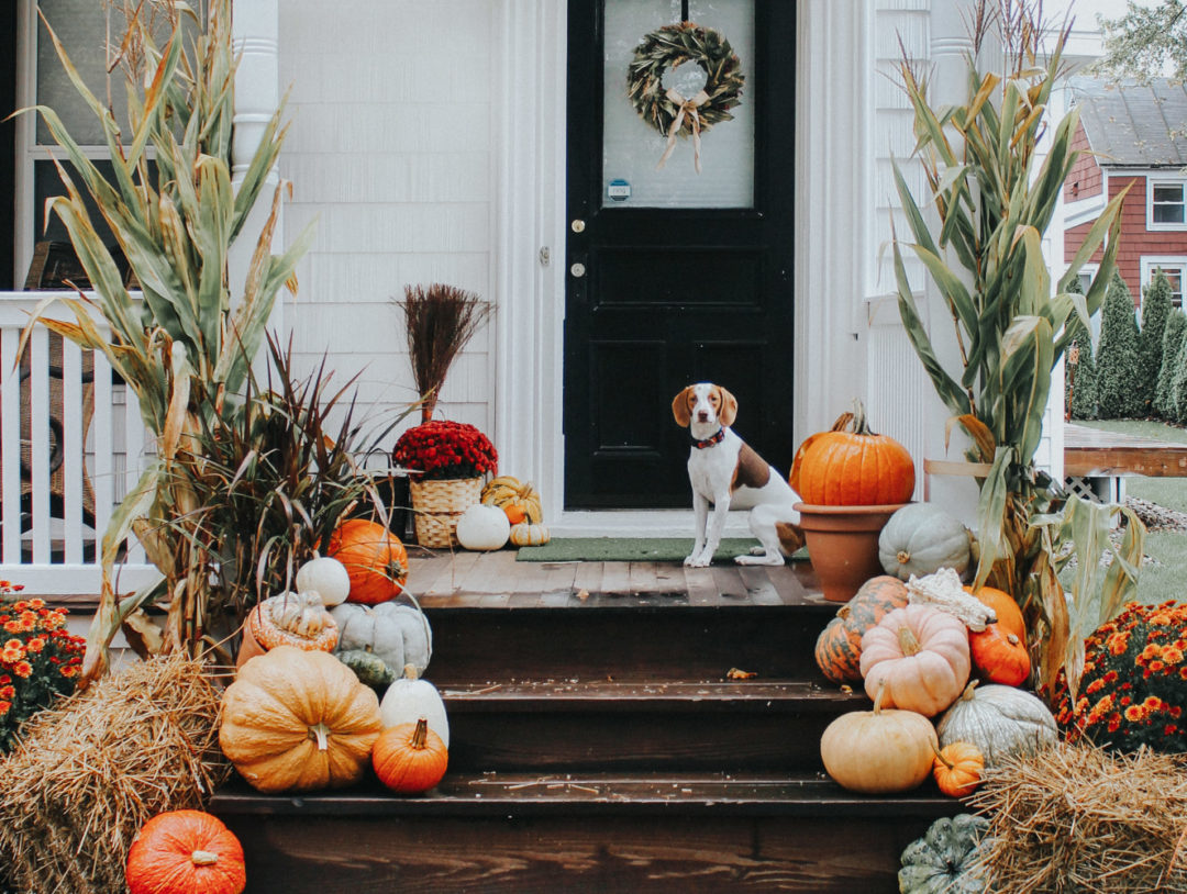 10 Best Fall Porches Just Met Jess